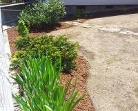 zasaditve-okoli-hise2.jpg