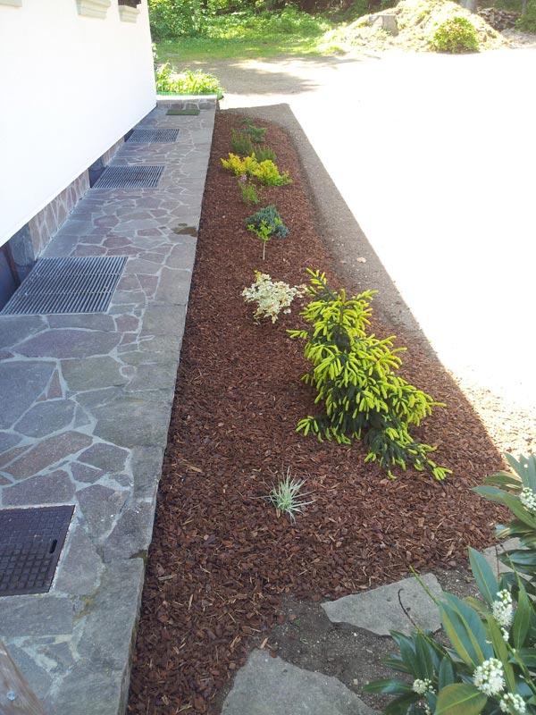 zasaditve-okoli-hise1.jpg