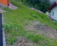 ureditev-zelenice-okoli-hise1.jpg