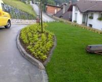 zelenice1.jpg